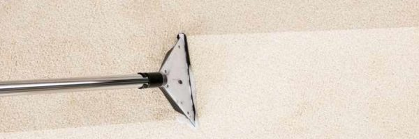 How carpet cleaning Ipswich can help