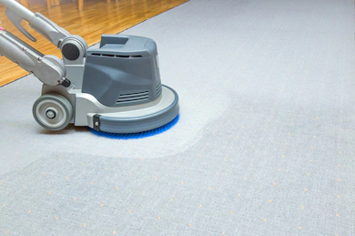 Professional Carpet Cleaning Bundamba