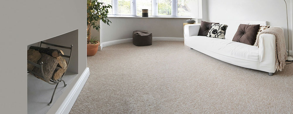 Lounge/Carpet Cleaning Forest Lake