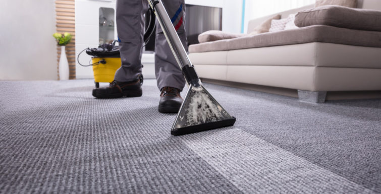 5 Reasons Why David Pye is Brisbane's Best Carpet Cleaning Service Pro