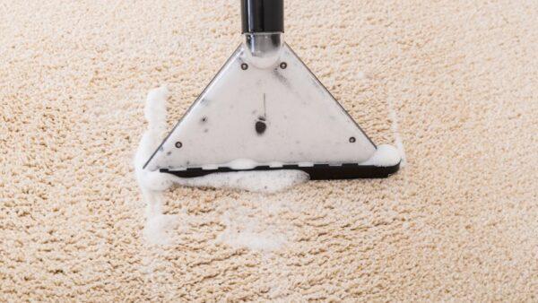 Carpet Cleaning Services Brisbane